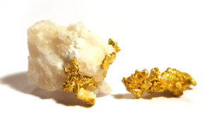 Native Gold in Quartzite