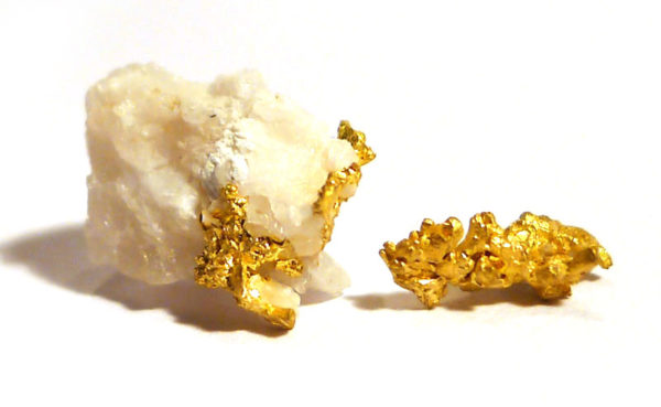 Native Gold in Quartzite 1
