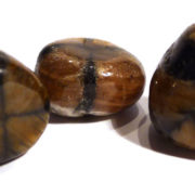 Chiastolite Tumble Stones, large