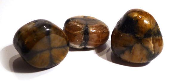 Chiastolite Tumble Stone 2
