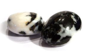 Zebra Jasper Tumble Stone, Black & White