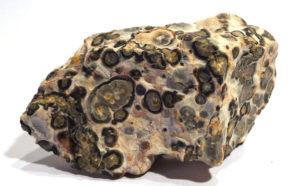 Leopardskin Jasper